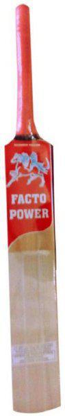 FACTO POWER Tennis Ball Poplar Willow Cricket Bat(950 g)