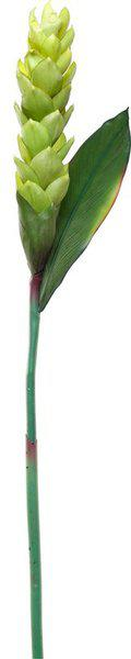 FreshKnots Green Wild Flower Artificial Flower(27.55 inch, Pack of 1)