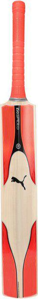 Puma evoSPEED 6 KW bat Kashmir Willow Cricket  Bat(Long Handle, NA)
