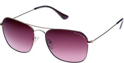 Giordano Aviator Sunglasses(Violet)