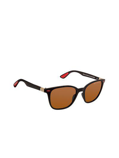 David Blake Unisex Polarised and UV Protected Wayfarer Sunglasses NSGDB1949x