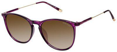 David Blake Regular lens Round Frame Sunglasses for Men - 1 david blake sunglass::1 selvit::1 soft shell case