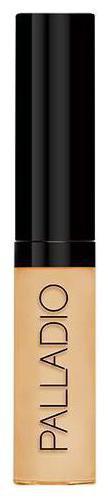 Palladio Beauty Liquid Concealer 5 ml