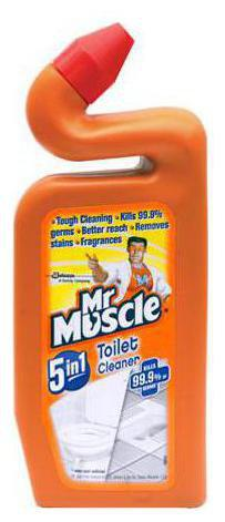 Mr. Muscle Toilet Cleaner - 5 in 1 500 ml