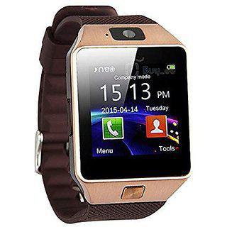 Seggo Dz09 Wearable Smartwatch Phone (brown)