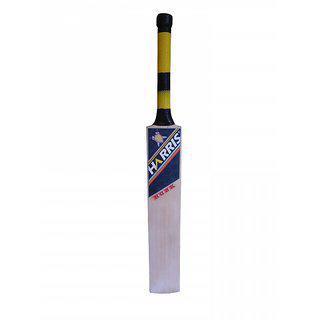 Harris Hunk Kashmir Willow Cricket Bat